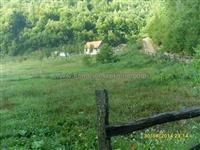 Plac 26340m2 u blizini Bijelog Polje, p9463