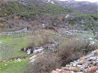 Kuca i plac od 5000m2 u Cetinje