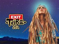 Ulaznica za Exit festival (važi i za Sea dance)