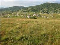 Livada od 18000m2 u blizini etno sela
