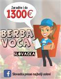 Branje voca, Slovacka