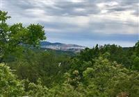 Plac okolina Bara Crna Gora