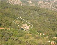 Plac povrsine 1771 m2 Buljarica